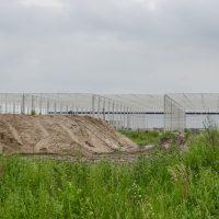 Waimea-Bydgoszcz-2020-07-10-5-1024x682