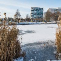 Balaton-Apartamenty-2021-01-18-3-1024x682