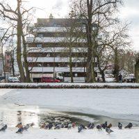 Park-nad-Kanalem-2021-01-15-2-1024x682