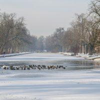 Stary-Kanal-Bydgoski-2021-01-18-13-1024x682