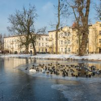 Stary-Kanal-Bydgoski-2021-01-18-4-1024x682